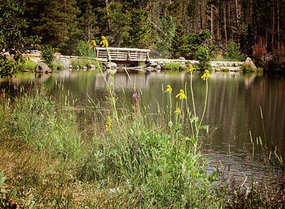 Photograph - Wooden Bridge by Sue Collura