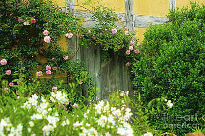 Photograph - Wooden Door Climbing Roses Secret Garden by Beverly Claire Kaiya