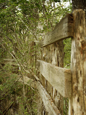 Photograph - Wooden Fence by Charles McKelroy