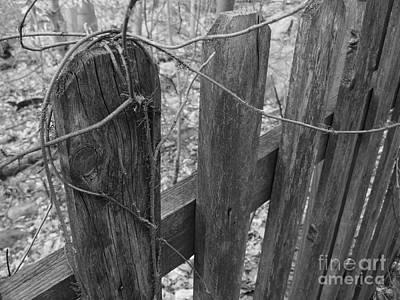 Wooden Fence Art Print by Jeff Breiman