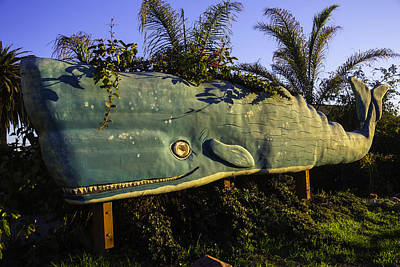 Marine Mammals Photograph - Wooden Green Whale by Garry Gay