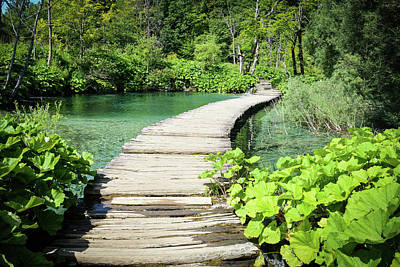 Photograph - Wooden Hiking Trail In Plitvice National Park by Brandon Bourdages