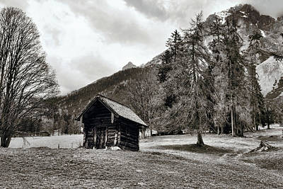 Photograph - Wooden Hut In The Dachstein Mountain Region by Menega Sabidussi