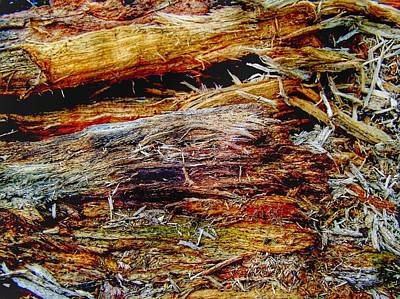 Photograph - Wooden by Isabella F Abbie Shores