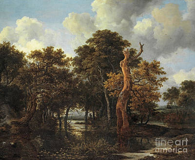 Painting - Wooden Marsh Landscape With Dead Tree by Jacob Salomonsz Ruysdael