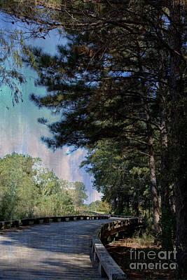 Photograph - Wooden Pathway by Ella Kaye Dickey