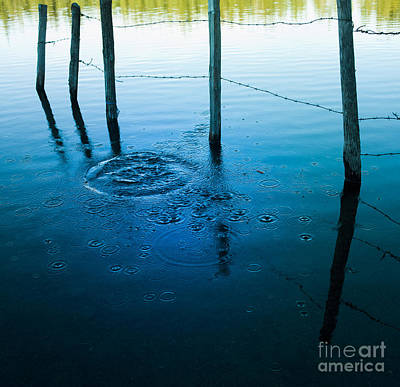 Barbed Wire Fences Photograph - Wooden Post In A Lake by Bernard Jaubert