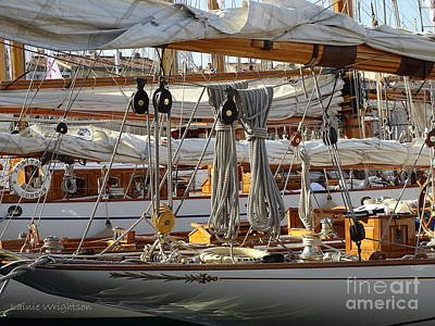 Photograph - Wooden Sailing Yachts by Lainie Wrightson