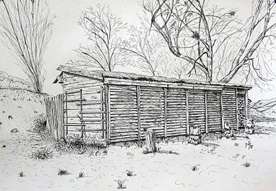 Wooden Shed Art Print