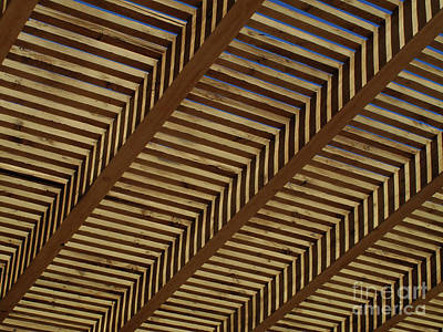 Photograph - Wooden Sky by Mary Kobet