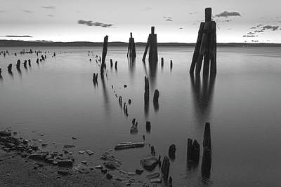 Wooden Soldiers Of The Hudson Monochrome Art Print