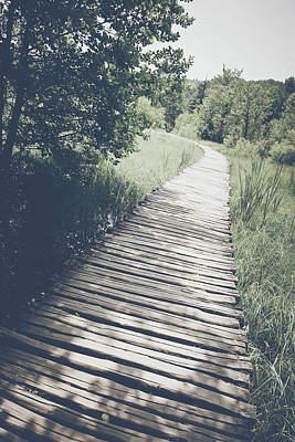 Mick Jagger - Wooden Trail in Forest in Retro Instagram Style Filter by Brandon Bourdages