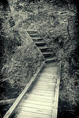 Photograph - Wooden Walkway Bw Series Y5379 by Carlos Diaz