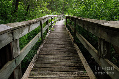 Photograph - Wooden Walkway I by Dennis Hedberg