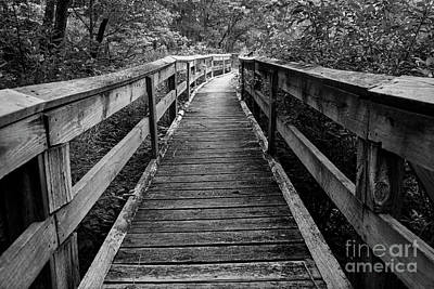 Photograph - Wooden Walkway II by Dennis Hedberg