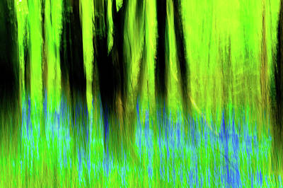 Woodland Abstract Vi Art Print