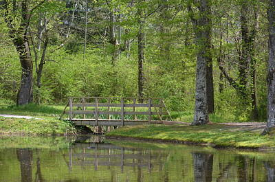Photograph - Woodland Bridge 15-01 by Maria Urso