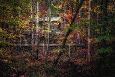 Rolling Stone Magazine Wall Art - Photograph - Woodland Bridge by Tom Mc Nemar