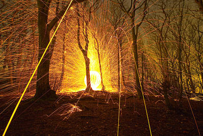 Photograph - Woodland Explosion  by Will Gudgeon