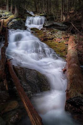 Art Print featuring the photograph Woodland Falls 2017 by Bill Wakeley