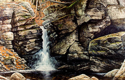 Falling Water Painting - Woodland Falls by Frank Wilson