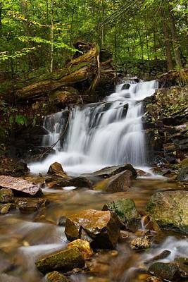 Photograph - Woodland Falls by Mike Farslow