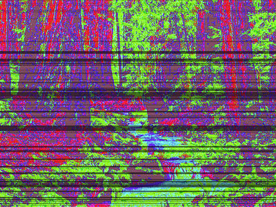 Woodland Forest D4 Art Print by Modified Image