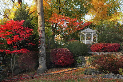 Photograph - Woodland Gazebo by Jessica Jenney