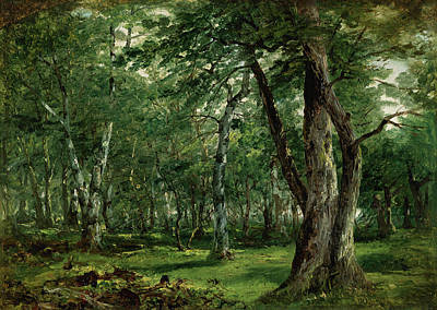 Nature Painting - Woodland Interior With Stream by John Frederick