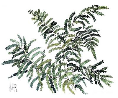 Painting - Woodland Maiden Fern by Laurie Rohner