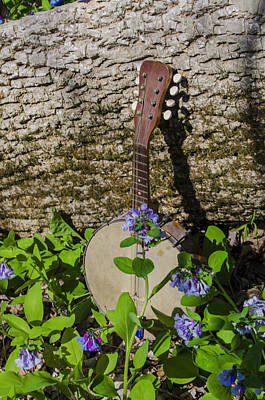 Woodland Music Art Print by Bill Cannon