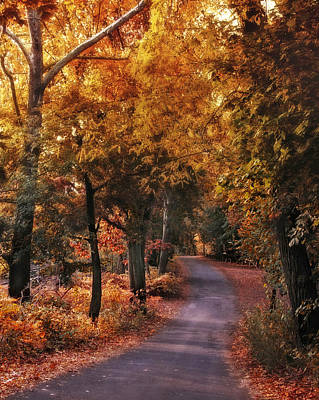Autumn Road Photograph - Woodland Path by Jessica Jenney