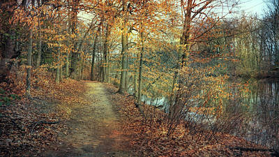 Photograph - Woodland Path by John Rivera
