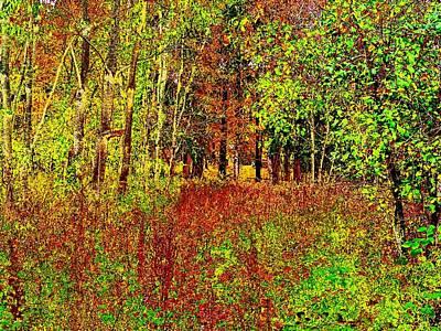 Digital Art - Woodland Scene 2 by Cliff Wilson