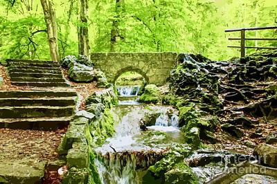 Woodland Steps And Stream Art Print
