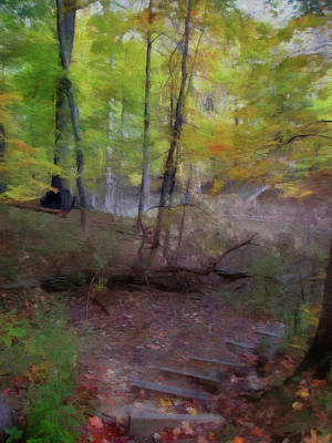 Photograph - Woodland Steps by Cedric Hampton