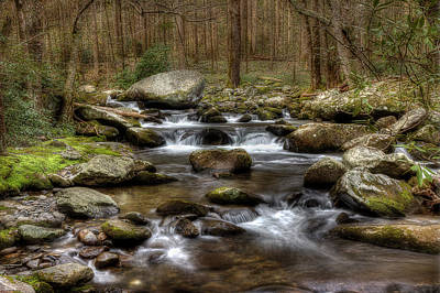 Photograph - Woodland Stream 2 by Mike Eingle