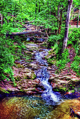 Photograph - Woodland Stream by Andy Lawless