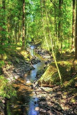 Photograph - Woodland Stream by James Billings