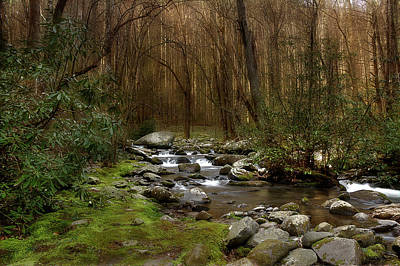 Photograph - Woodland Stream by Mike Eingle