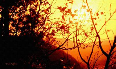 Photograph - Woodland Sunset by Frank Wilson