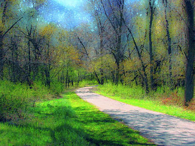 Woodland Trail Art Print