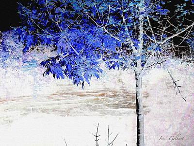 Digital Art - Woodland Treasure by Iris Gelbart