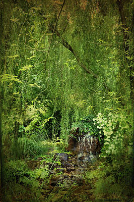 Photograph - Woodland Waterfall by Carla Parris