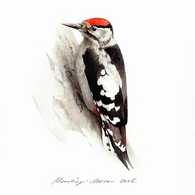 Painting - Woodpecker by Attila Meszlenyi