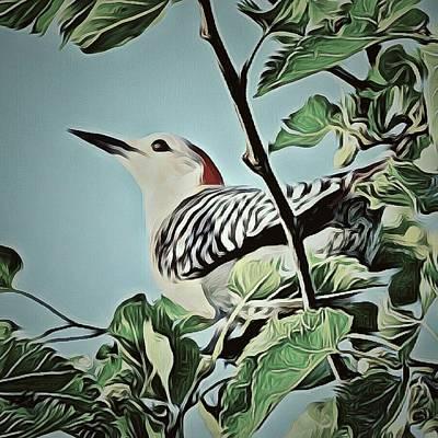 Woodpecker Mixed Media - Woodpecker  by Deborahlynne Meyer