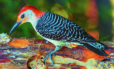 Photograph - Woodpecker On A Log by Jim Moore