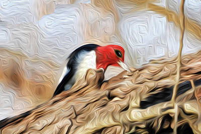 Photograph - Woodpecker Pecking by Michelle McPhillips