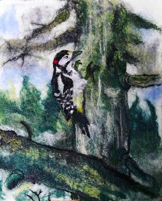 Painting - Woodpecker by Susanne Weber