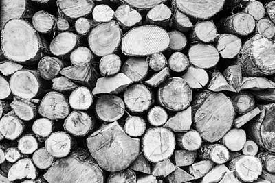 Photograph - Woodpile by Stewart Scott